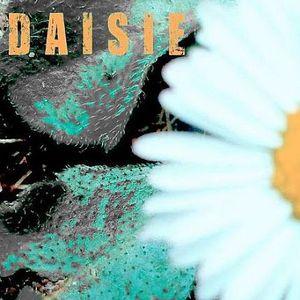 DAISIE | 6th February 2014 | ALL FM 96.9