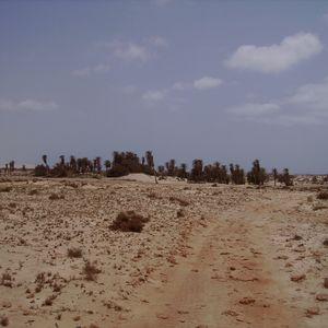 Ruidos de la Ciudad 8 - Bamako - electric !