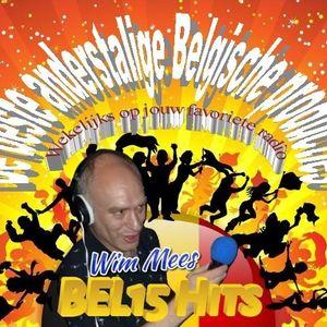 BEL30 Hits met Wim MEES (W32/2021)