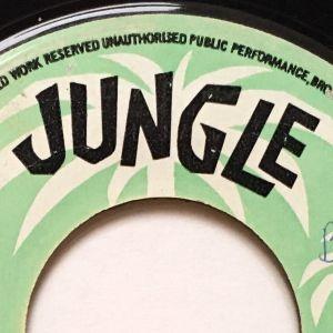 JUNGLE CLASSIC'S (VOL. 16) (DJ DU SET)
