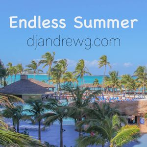 DJ Andrew G - Endless Summer (Vocal & Melodic House)