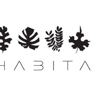 King Da Groove - @ Habita (Old Times On my Mind)