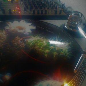 Quiet Garden Jazz ( a good night vinyl song )