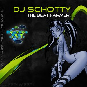 Doublewide Promo 2010 dj Schotty