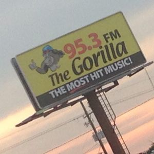 953 GORILLA COMMERCIAL FREE MIX BY DJ STEEN