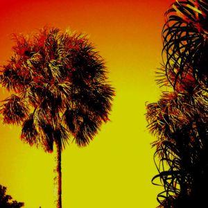 LAGOON: Summer Session 2015 Vol.1
