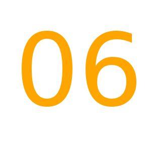 Orange06