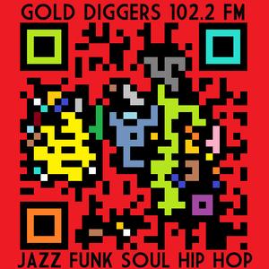Gold Diggers - Beastie Boys & Golden Age of Hip Hop