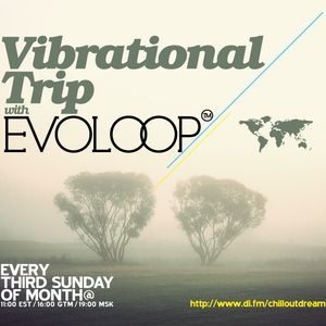 EvoLoop - Vibrational Trip 015 (11-20-2011)