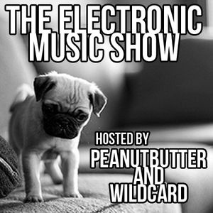 The Electronic Music Show - 01.10.2014