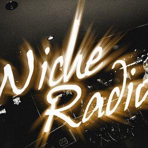 Niche Radio - 04/05/16 - Civil War, Westeros & more!