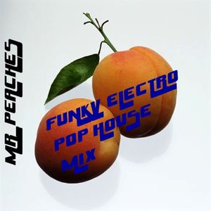 MR_PEACHES Vol. 1 (Funky Electro-Pop House Mix)