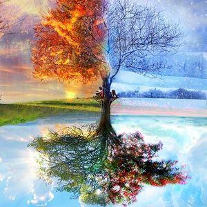 Demark - seasons