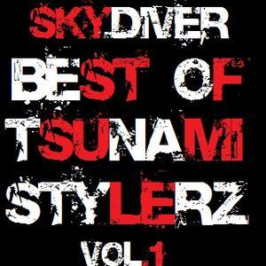 SkyDiveR - Best Of Tsunami StylerZ Vol.1 [ Best Club Electro & Progressive House 2014 ]