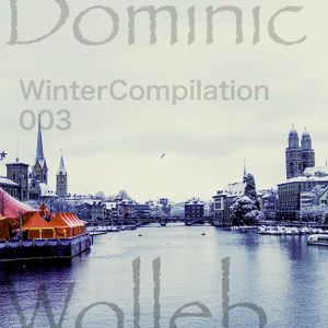 Dominic Wolleb - WinterCompilation 003