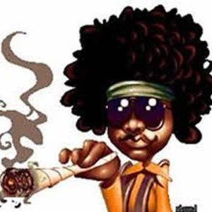Bondi 2009 - Legalización de la Marihuana