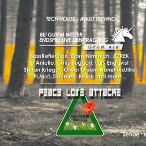 Chris Buggert@ Peace Love Attacke Open Air am 09.07.16
