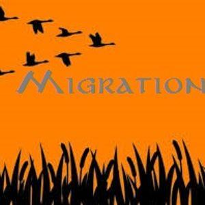 djCodiak Presents Migration (An African Design) 2017