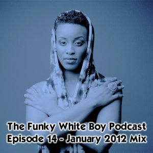 Episode 14 - January 2012 Mix