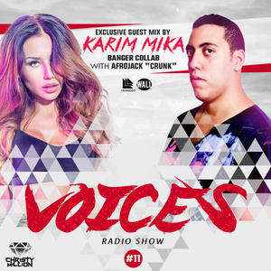 Voices #11 (Exclusive Guestmix - Karim Mika )
