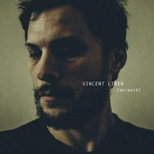 Influences litigieuses de Vincent Liben