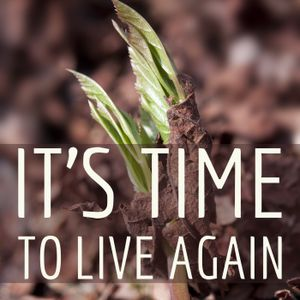 It's Time To Live Again by World Revival Church Sermons