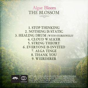 22 min Algae Bloom in Blossom