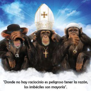Se Vienen Los Monos !!!!  Y Ya Están Aquí !!!
