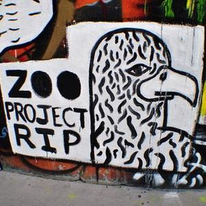 Zoo Project #podcast #FranceCulture