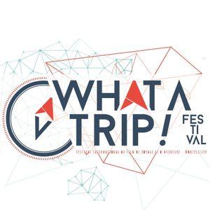 Méridionale du lundi 29 mai 2017 : What A Trip ! Festival