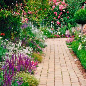 Poppy's poetry&prose programme - gardens