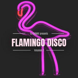 Flamingo Disco 2 (IG Live set)