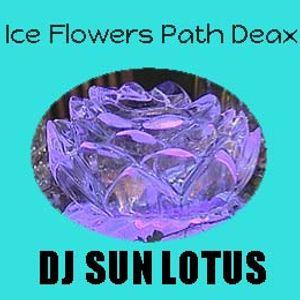 Ice Flowers Path 2