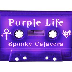 Purple Life Podcast Episode 3 with Dj Alex Mejia