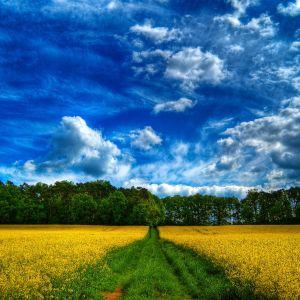 Prajekt - Chasing the Sky (2012 Summer Mix)