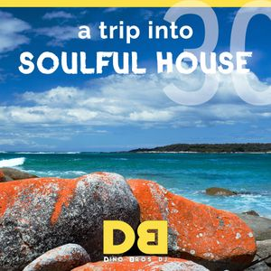 A trip into Soulful House (Trip Thirty) - Put a little bit of funky in your soul