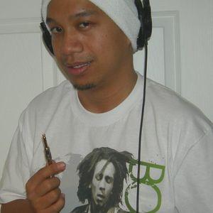 DJ Duck's Reggae Riddims Vol. 1-3