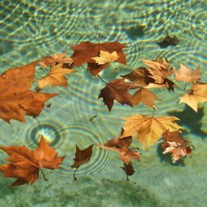 Welcome_Autumn17_In_Deep_House
