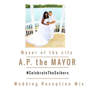 The Seibers Wedding Reception Mix