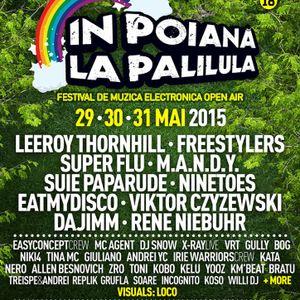 Sync (Easyconcept) @ In Poiana La Palilula 2015