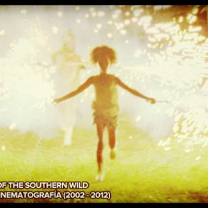 #41: Beasts of the Southern Wild/Mejor Cinematografía (2002 - 2012)