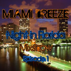 Miami Breeze - Night in Florida Mixshow Episode 1 [January 2012] (Best Of 2011)
