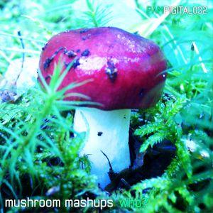 mushroom mashups