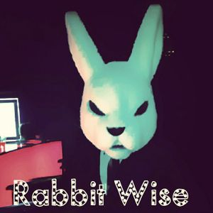 Rabbit_Wise_TEAM__Music_Podcast-2015