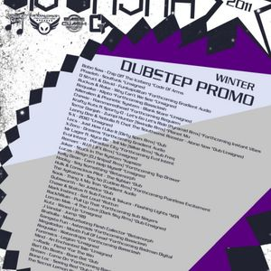 Big Basha - Winter Dubstep Promo 2011