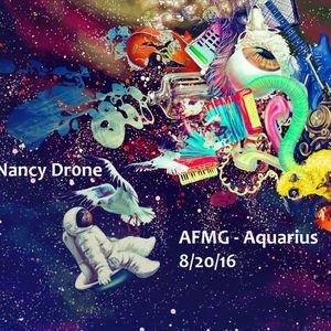 Nancy Dr0ne @ Asheville Full Moon Gathering (August 2016)
