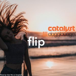 catalyst: flip (live from dogglounge.com)