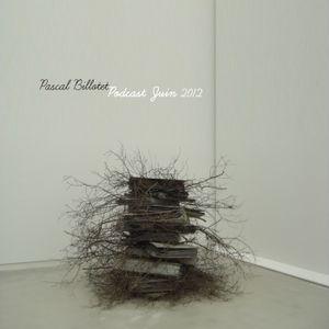 Pascal Billotet/ Juin 2012