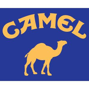 Dj Camel - BIG Stuff (Dubstep Mix)