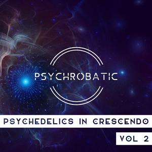 Psychedelics In Crescendo Vol. 2